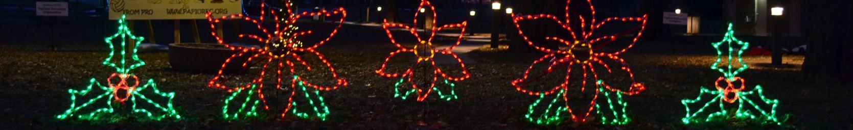 LED Christmas Displays