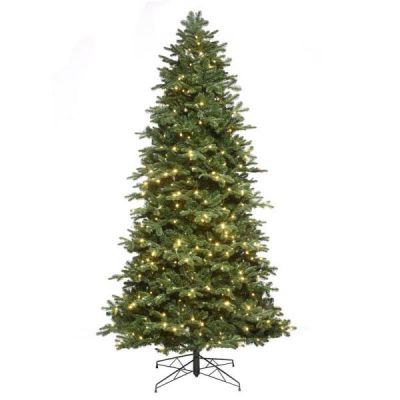9.5' Noble Fir Tree