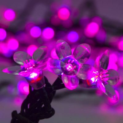 LED 70 Cherry Blossom Light strand (Pink)