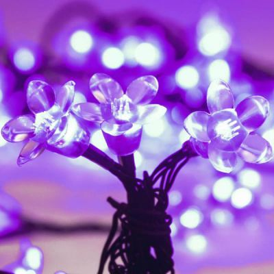 LED 70 Cherry Blossom Light strand (Purple)