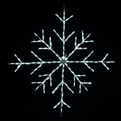 LED 36