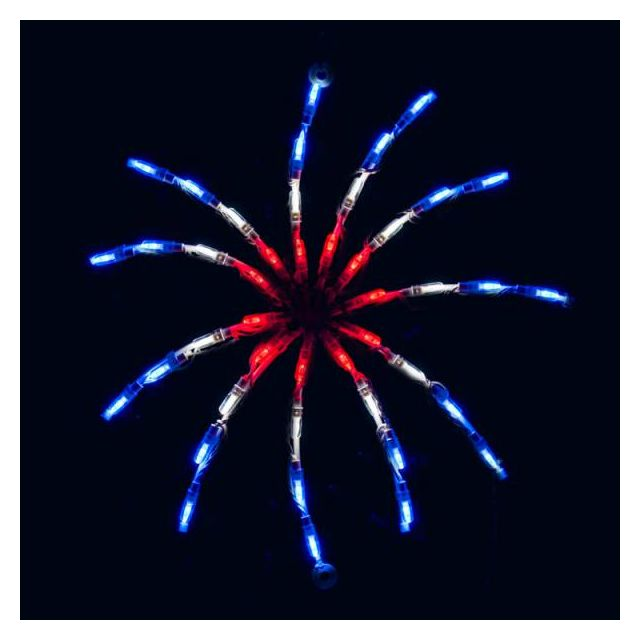 Red White and Blue Firecracker Small