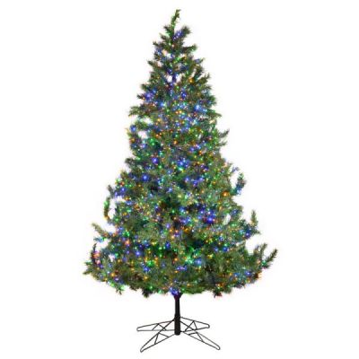 7.5' Pre-Lit Oregon Fir Tree