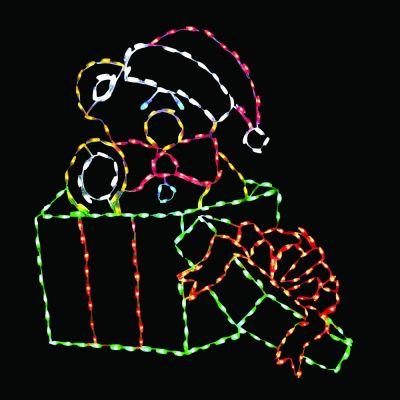 LED Bear in Box