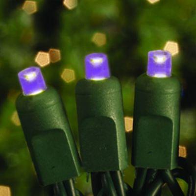 70's LED Concave Lights (Purple)