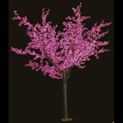 Cherry Blossom Tree Purple