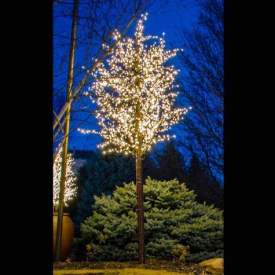 LED 15' Linden Tree, Brown Trunk, Warm White Lights