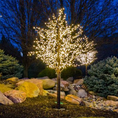 LED 8' Linden Tree, Brown Trunk, Warm White Lights