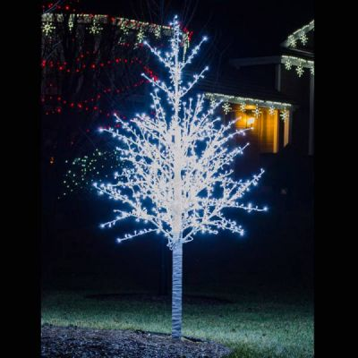 LED 8' Linden Tree, White Trunk, White Lights