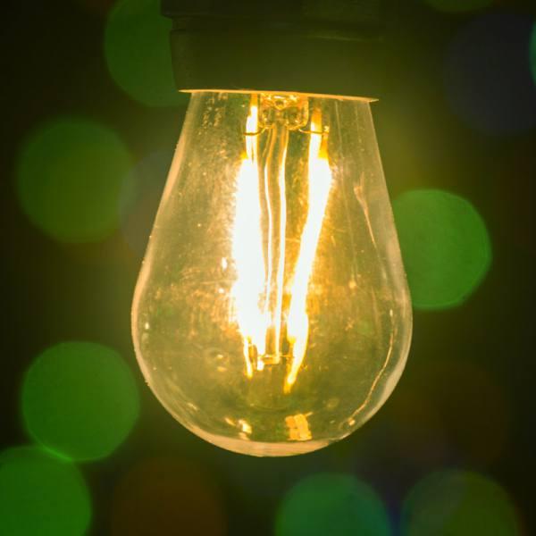 Edison Bulbs (S14)